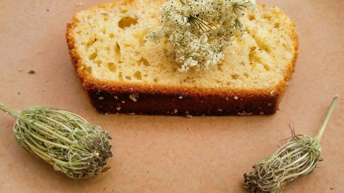 Recette : gâteau au yaourt aux fruits de carotte sauvage